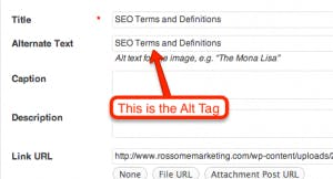 As tags Alt nas imagens desempenham um papel importante no ranking orgânico da sua página da web.